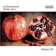 Sonates, ZWV 181