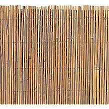Suchergebnis Auf Amazon De Fur Sichtschutz Bambus