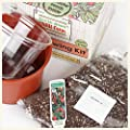 Chilli Growing Kit