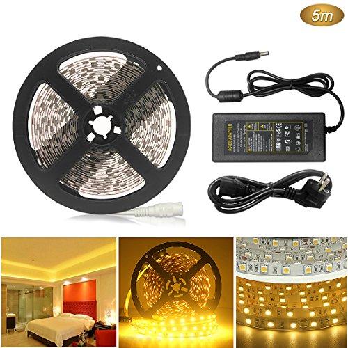 AveyLum LED Streifen Warmweiß 5m 5050 SMD 300 LEDs LED Lichtleiste 16.4ft mit DC 12V 6A Netzteil für Haus Küche Weihnachtsfest Hochzeit Schaufenster Dekoration [Energieklasse A+] (Flo Tv-show)