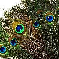 """TEFOMATE 100piezas Plumas del pavo real con los ojos naturales (10""""-12"""") Altas plumas de cola del pavo real de la calidad para la decoración"""