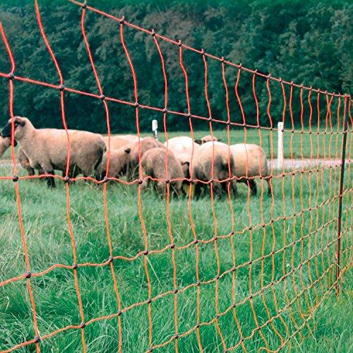 Rutland 28-170R Filet de clôture orange pour troupeau de mouton - 50 m