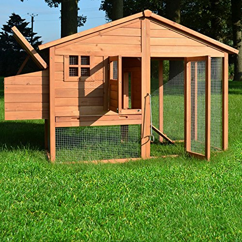 """ZooPrimus Hühner-Stall Nr 14 Geflügel-Voliere """"LUXUS-HÜHNERHAUS"""" Enten-Haus für Außenbereich (Geeignet für Kleintiere: Hühner, Geflügel, Vögel, Enten usw.) - 3"""