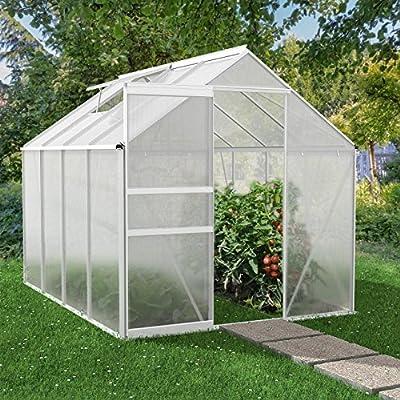Rotfuchs Alu Gewächshaus mit Fundament Treibhaus Frühbeet Garten Tomaten Pflanzen Dachplatten 6 mm von Rotfuchs - Du und dein Garten