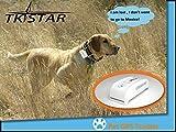 PremiumDogTM Hunde Katzen Pet – GPS Tracker — B WARE – ohne Halsband !!! - 3