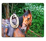 616W3uWHMVL. SL160  UK BEST BUY #1MSD Natural Rubber Mousepad IMAGE ID: 5357870 detail of a cowboy horse in a forest price Reviews uk