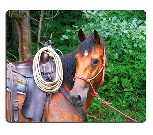 616W3uWHMVL UK BEST BUY #1MSD Natural Rubber Mousepad IMAGE ID: 5357870 detail of a cowboy horse in a forest price Reviews uk