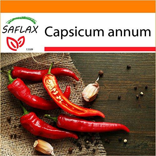 Galleria fotografica SAFLAX - Garden in the Bag - Peperoncino di Cayenna - 20 semi - Capsicum annum