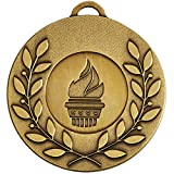 Best Leader Trophies - Trophy 50mmBronze Laurel Leader 50 medal with Ribbon Review