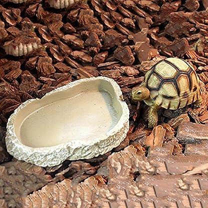 UEETEK Resin Pets Feeding Plate Reptile Feeding Bowl Vivarium Food Water Dish Bowl for Turtle Gecko Snake Pet Breeding… 5