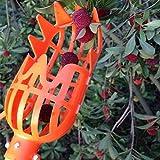 Kicode Kunststoff Fruit Picker Basket Kopf Arbeitsersparnis Früchte Fänger für die Ernte 7,8 * 3,1 * 3,1