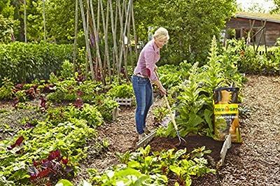 Floragard Kompost-Erde 60 L von Floragard - Du und dein Garten