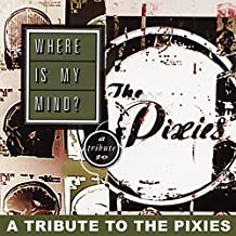 Where Is My Mind? Tribute to Pixies