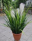 Licht & Grün exclusive Kunstpflanzen Künstliches Gras mit 3 Hellen Blüten ca. 60cm im schönen Topf