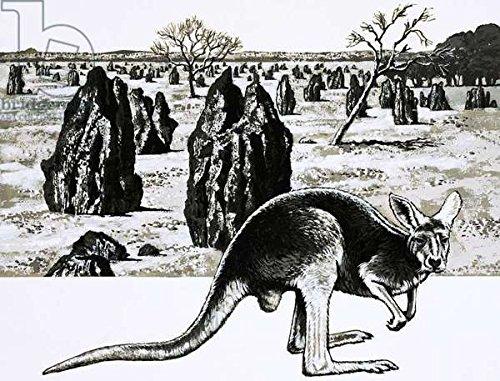 poster-bild-80-x-60-cm-large-termite-mounds-near-darwin-australia-and-a-kangaroo-in-foreground-bild-
