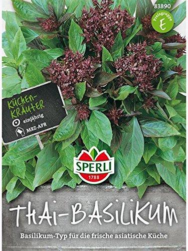 Basilikum Thai