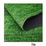 WJ Simulazione Lawn Site Enclosure Plastic Mat Falso Tappeto erboso Verde Artificiale Decorazione da Parete Tappeto da Esterno Matrimonio Dust Net (Color : T 2.5cm, Size : 2 * 5m)