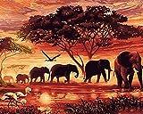 DIY Digital Leinwand-Ölgemälde Geschenk für Erwachsene Kinder Malen Nach Zahlen Kits Home Haus Dekor - Sonnenuntergang Elefanten 40*50 cm