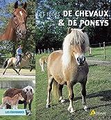 RACES DE CHEVAUX ET PONEYS