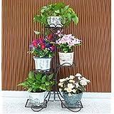 MILUCE Estantes para plantas escalera metálica macetas flores estantería, flores estantería ,estantería de soporte para plantas ( Color : 6 )
