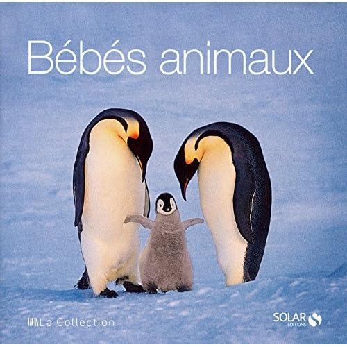 Bébés animaux - La Collection