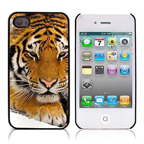 Graphic4You Baby Tiger Tier Design Harte Hülle Case Tasche Schutzhülle für Apple iPhone 4 und 4S Design #2