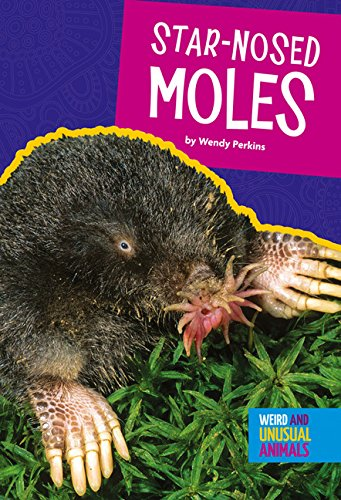 Star-Nosed Moles (Weird and Unusual Animals) Star Nosed Mole