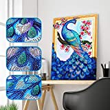 Diamond Embroidery TAOtTAO Special Shaped Diamond Painting DIY 5D Partial Drill Cross Stitch Kits Crystal R (C)