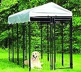 Maxx - Hundezwinger für Draußen mit Dach und Tür - Hundehütte Hundekäfig Sonnendach Hundehaus Hütte - 2,4 x 1,2 x 1,8m