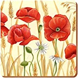 Creative Tops Field Poppies Cork-Backed Coasters, Set of 6