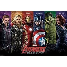 Empire merchandising 677129 The de Los Vengadores, Age Of Ultron, del equipo, de dibujos animados de cómic de póster de cartel de presión, 91,5 x 61 cm de tamaño