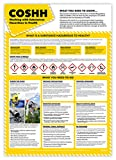 Best Safety Posters - COSHH Working with Substances Poster | Laminated A2 Review