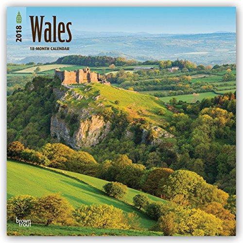 Descargar Libro Wales 2018 - 18-Monatskalender mit freier TravelDays-App: Original BrownTrout-Kalender de Browntrout