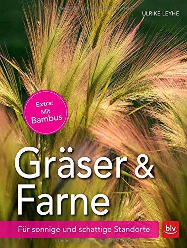 Preisvergleich Produktbild Gräser und Farne: Für sonnige und schattige Standorte