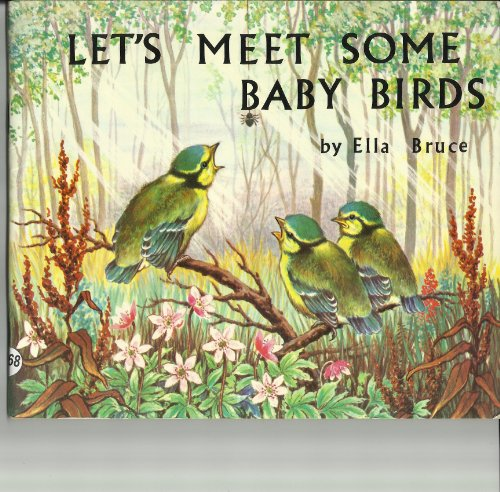 lets-meet-some-baby-birds-medici-books-for-children