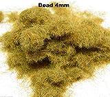WWS Morto 4 millimetri Model Mix Basing Statico Grass 10g G, O, HO / OO, TT, N.Z Wargames - wws - amazon.it