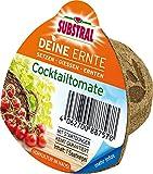 Substral Deine Ernte Saatkegel Cocktailtomate Kegel aus Keimsubstrat, Dünger und Samen, 1 Stück