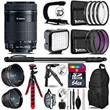 Canon 55-250mm Is STM Lens + 0.43X Wide Angle Lens + 2.2X Telephoto Lens + LED Kit + Video Stabilizing Handle + UV-CPL-FLD Filters + Macro Filter Kit - International Version - B075RDXHFL