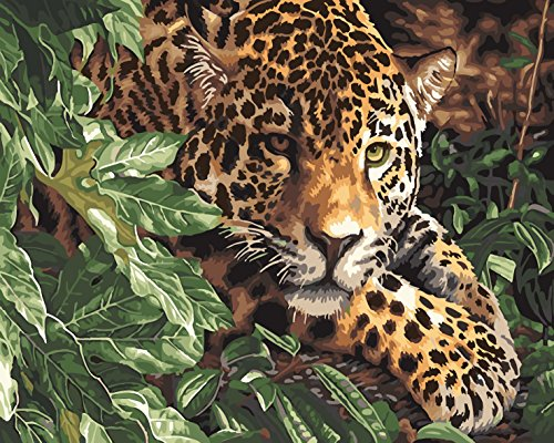 Paint by Numbers Kits, Tiere Gemälde für Erwachsene Kinder Senioren Junior, DIY Ölgemälde auf Leinwand mit Holz-Frame (Leopard) (Kinder-paint Kit)