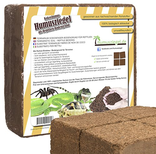 70 L Kokoseinstreu Bodengrund Terrarienerde für Reptilien - Kokoserde einfach portionierbar - MAXIBLOCK Terrarium Humusziegel Einstreu Cocoground Kokosgrund Kokoshumus Kokosziegel Kokosfaser Briketts Kokobricks -fein-