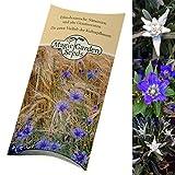 Saatgut Set: 'Geschützte Alpenblumen', Edelweiss und Enzian als Samen für die Anzucht im Garten in schöner Geschenkverpackung