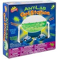 Scientific Explorer Ant Lab Gel Station Science Kit by Scientific Explorer