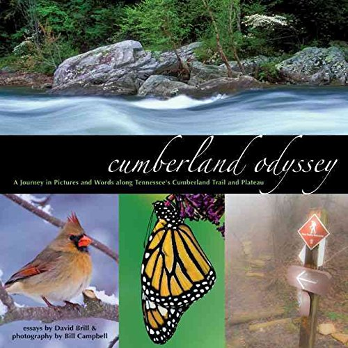 [Cumberland Odyssey: A Journey in Pictures and Words Along Tennessee's Cumberland Trail and Plateau] (By: David Brill) [published: January, 2011]