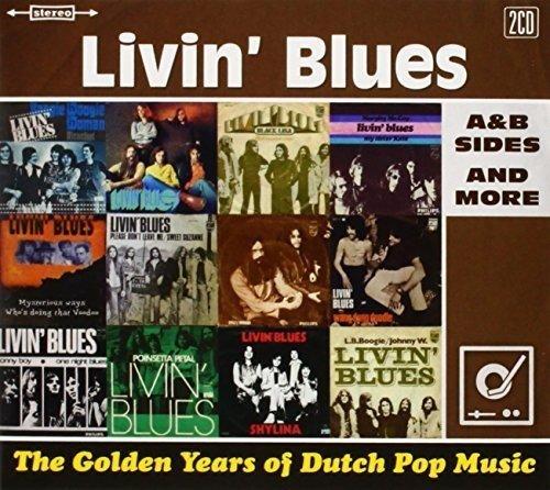 Preisvergleich Produktbild Golden Years of Dutch Pop Musi