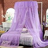 Instalar Continental Cúpula de techo Nets gasa velo Corea Princesa Palacio gratuito ( Color : Purple )