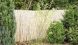Bambusmatte 300 x 200 cm