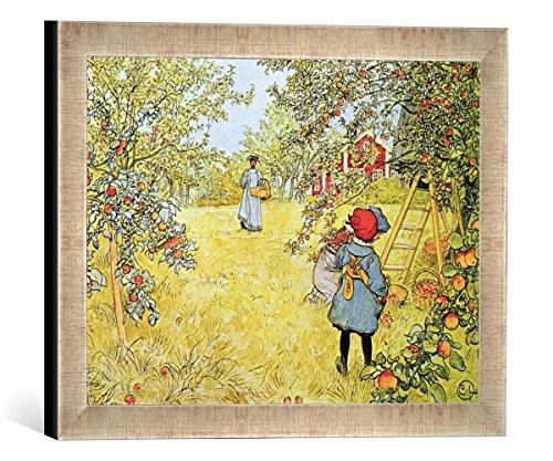 Gerahmtes Bild von Carl Larsson The Apple Harvest, Kunstdruck im hochwertigen handgefertigten Bilder-Rahmen, 40x30 cm, Silber Raya -