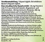 Vitamin C Kapseln, Ascorbinsäure natürlich und hochdosiert aus der Amla Beere. Mehr als nur Ascorbinsäure für ein starkes Immunsystem! Amla Super C 30 Kapseln – von Dr. Hittich - 4