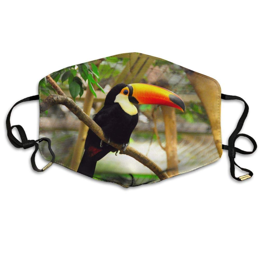 Daawqee Mascarillas, Tropical Bird Toucan Printed Mask Neutral Mask Men Women Polyester Dust-Proof Breathable Mask