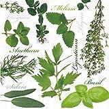 Servilletas/puntos/20 pcspackg/servilletas tecnología/herbal tecla/hierbas albahaca/Menta/Romero
